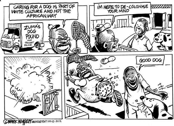 Zuma in the dog box