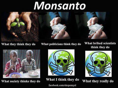 The real Monsanto