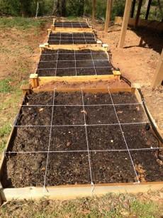 Drip-irrigation-