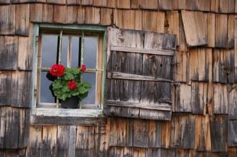 window-811715__340